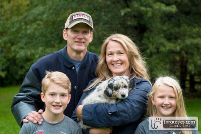 Poppy - Blue Merle Girl - Sold to Hoffer family in MN
